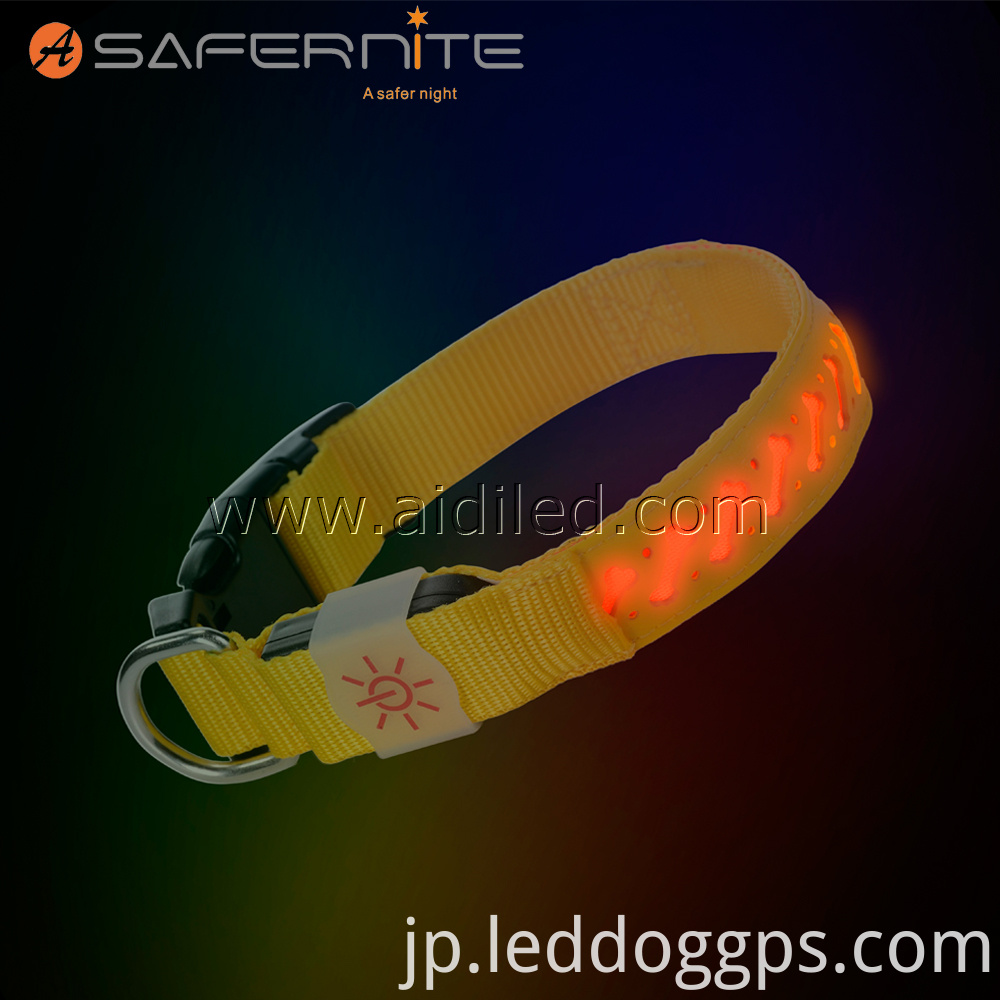 Glowing Light Up Dog Collar