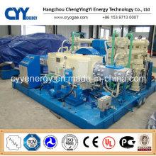 CNG32 Skid-Mounted Lcng CNG LNG Kombi-Tankstelle