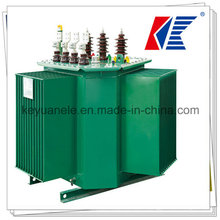 Transformer 220V 50Hz Transformer Oil/Current Transformer