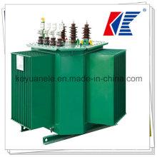 Transformer 220V 50Hz Transformer Oil/Current Transformer