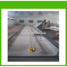 MT broiler chicken poultry floor feeding