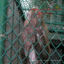 Animal Fence Zool Fence Garden Fence Sportland Fence