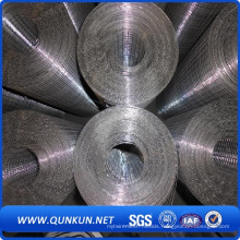 PVC Coated Galvanized Welded Wire Mesh with Factory Price