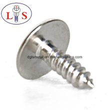 Truss Head Cross Recess Self-Tapping Screw with High Quality