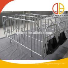 Truie d'élevage porcin Sty en utilisant des caisses de gestation