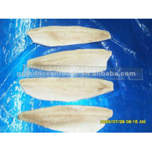 Frozen herring fish fillets