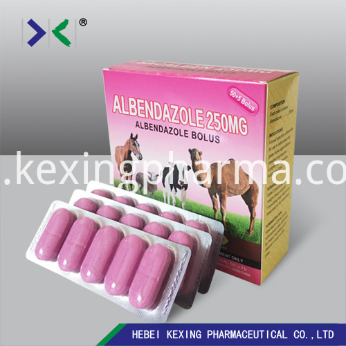 Albendazole Tablet 300mg