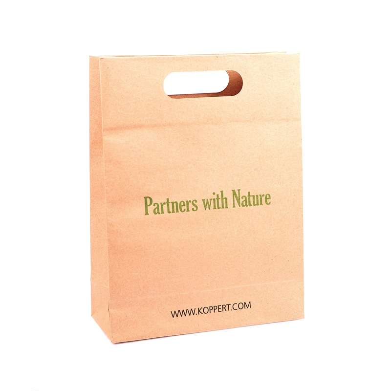 Kraft Paper Bag 10