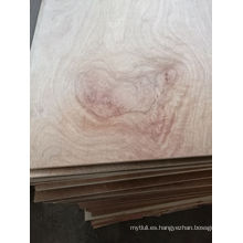 18mm Meranti Plywood Poplar Núcleo E1 Cola BB / CC Grado