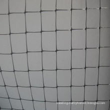 Anti Bird Net, Diamond or Square Shape, 10x10/15x15/8x18/20x17/20x20 for Plant Protection