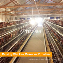 Discount Selling A Frame Automatic Layer Chicken Battery Cage For Nigera Farm