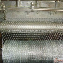 PVC revestido Hexagonal Wire Mesh (fábrica)