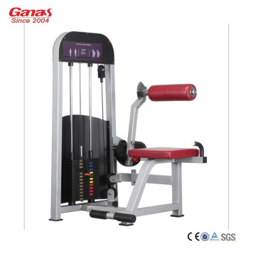 Professional Workout Gym Equipment Back Extension