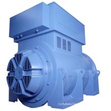 Single Bearing Land Use Industrial Alternator