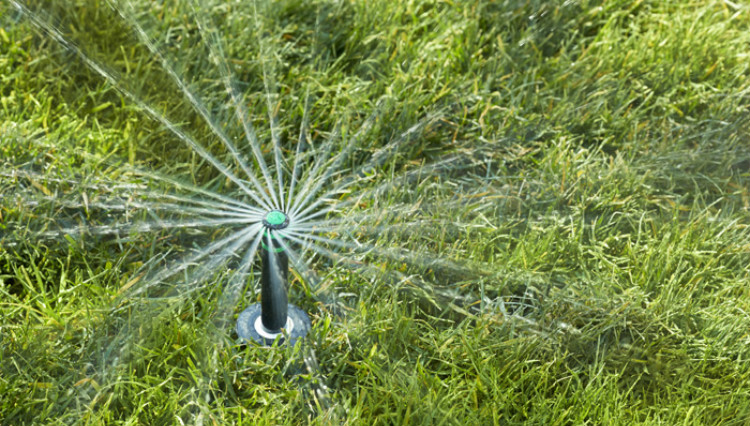 irrigation pop up rotary