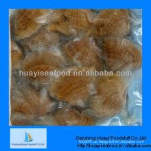 Gefrorene gekochte Surfmuschel Meeresfrüchte