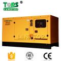 10KVA -1000KVA Weifang Power Diesel Generador Precio