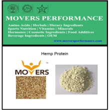 Proteína orgánica de alta calidad: Polvo de proteína de cáñamo