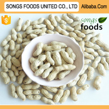 New Peanut Inshell Agricultural Products
