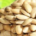 preço de mercado de sementes de abóbora nova safra venda quente