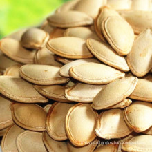 Chinese pumpkin seed kernels in shell