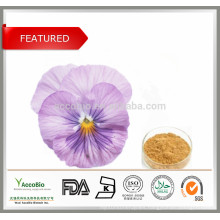 Food Supplement,Cosmetic ingredients Viola Tricolor, ext.Pansy Extract 10:1 20:1