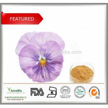Suplemento alimentar, ingredientes cosméticos Viola Tricolor, ext.Pansy Extrato 10: 1 20: 1
