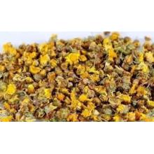 Chrysanthemi Indici Flos de calidad superior