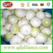 Rojo fresco púrpura blanco cebolla pelada exportación al mercado de Austrilia