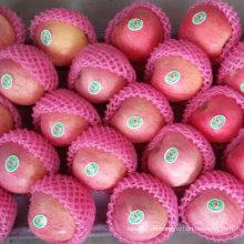 Chinesischer frischer Qinguan Apfel
