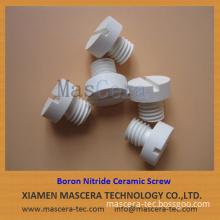 Hot Pressed Boron Nitride HPBN Ceramic Screw