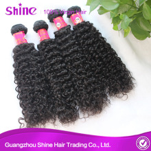 Mink Brazilian Kinky Curly Human Hair Extensions