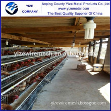 used poultry equipment/broiler poultry farm equipment/poultry feed mill equipment