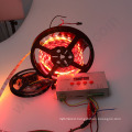 full color changing dmx addressable ws1221 UV 12VDC individual IC control digital pixel rgb flexible led strip