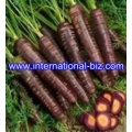 Black Carrot Juice Concentrate