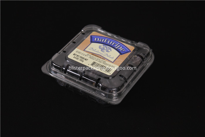 Blueberry Clamshell Packaging