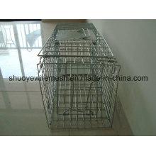 Rat Traps Cage à piège pour petits animaux