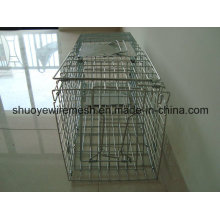 Rat Traps Small Animal Trap Cage