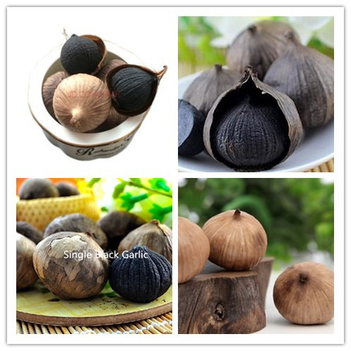 solo black garlic
