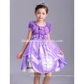 Vente chaude sophia robe costume petite princesse fille robe pour les enfants vêtements de fête