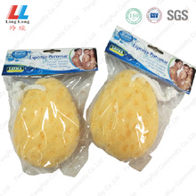 Seaweed basic bath sponge