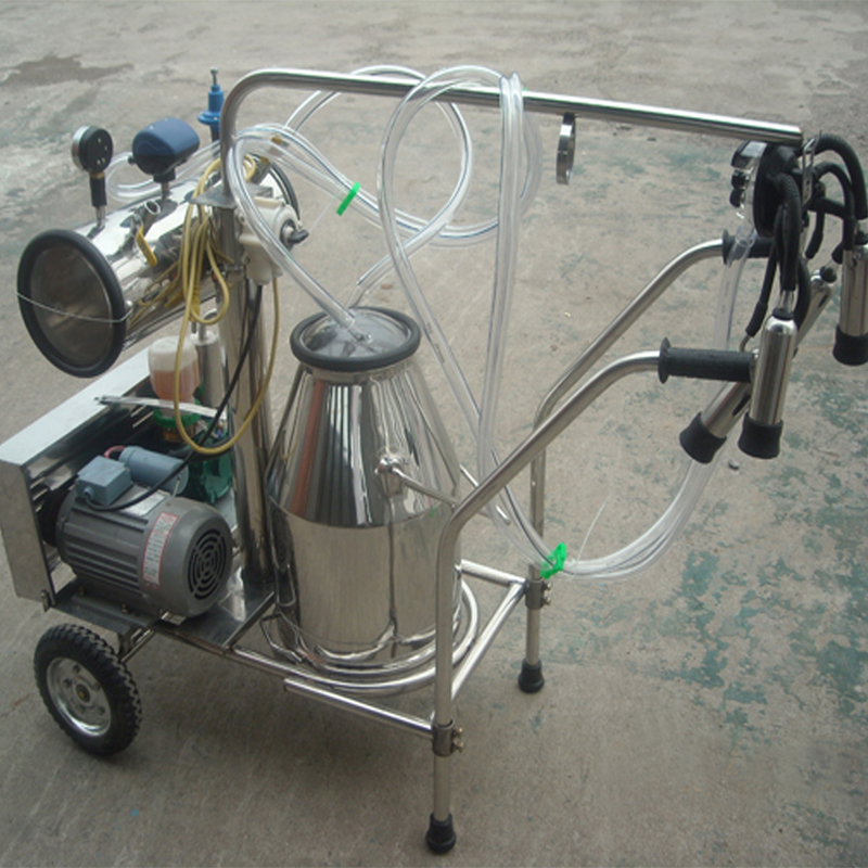 Milking Machine for Lactational Cow