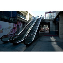 Aksen Rolltreppe Außentür Typ