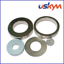 China Ring NdFeB Magnets (R-001)