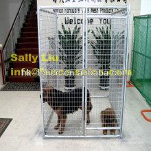 Cage de chien galvanisée