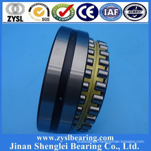 China Bearing Manufacturer high quality double row cylindrical roller bearing RN206