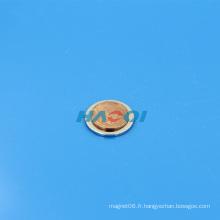 Minuscule disque magnétique NdFeB fort