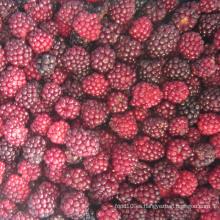 Zl-1046 Anic Blackberry Zl-1046 25