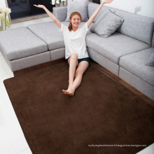 tapis de tapis shaggy de mousse de mémoire pour le salon