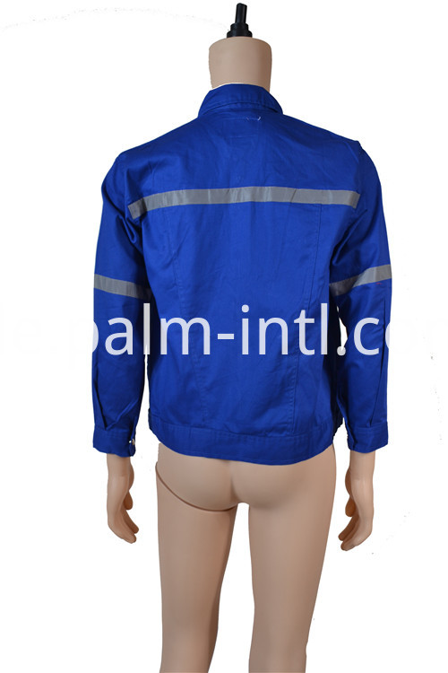 Cotton Royal Blue Clothes
